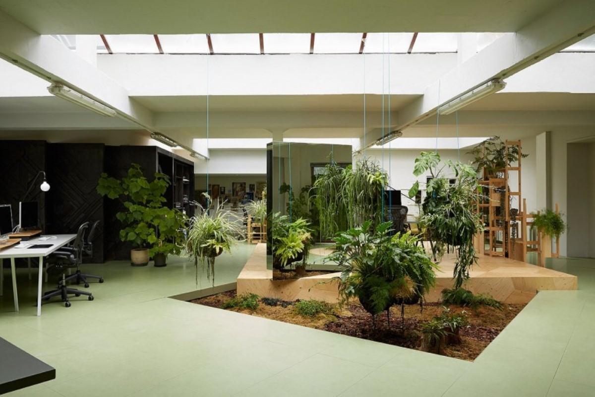 Studio-office-indoor-gardening-ideas-and-naturally