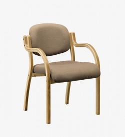 Linya Visitors Chair